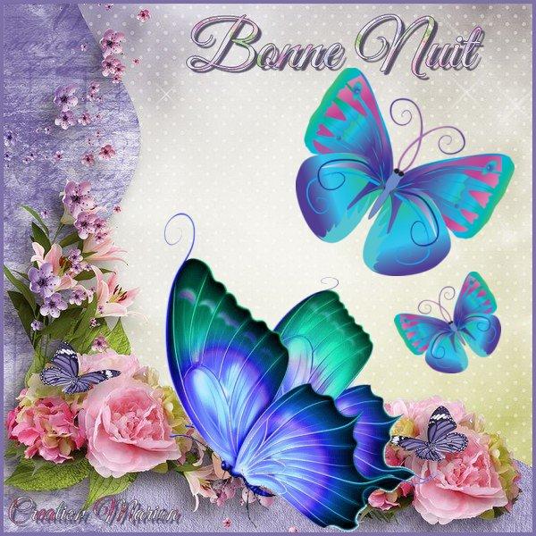 Samedi 8 décembre Papillons_cadre_bonnenuit